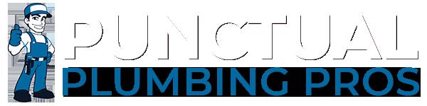 Punctual Plumber Pros Services Logo